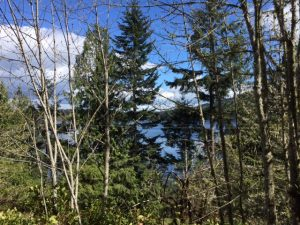 glimpses-of-lake-along-trail
