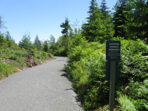 past-upper-service-gate-crushed-gravel-path-through-clearcut-forest