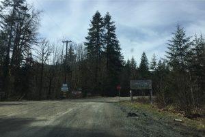 start-of-logging-road-at-13km-5