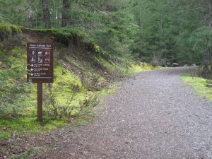 tct-and-cowichan-valley-trail