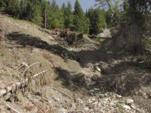 ds-photo-15-slides-above-trail
