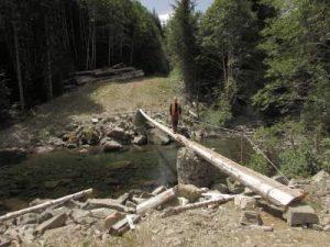 ds-photo-21-grilse-log-crossing
