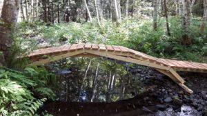ds-photo-4-grilse-bridge
