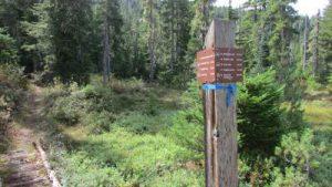 ds-22-trail-jct-e-end-mckenzie-meadows