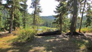 ds-26-mckenzie-campsite