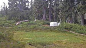 ds-39-circlet-campsite
