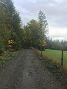 wide-open-gravel-road